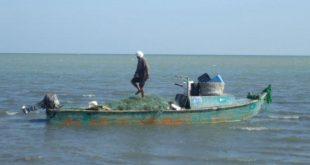الحديدة: بالأسماء العثور على جثث الصيادين المفقودين