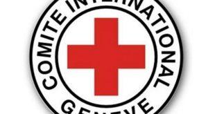 صنعاء:وزير الصحة يلتقي نائب رئيس بعثة اللجنة الدولية للصليب الأحمر