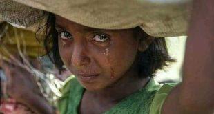 نازحوا الحديدة .. مأساة ومعاناة مستمرة في ظل تقاعس حكومتين لاترحم !!