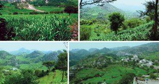 محمية عُتْمَة الطبيعية: قطعةٌ من جمال اليمن