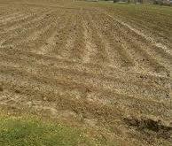الحديدة:توقف عدد من المزارعين عن زراعة اراضيهم بسبب ارتفاع الديزل