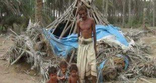 الحديدة: ابناء الدريهمي يطالبون بالسماح لهم للعودة الى منازلهم