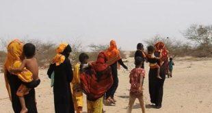 الحديدة : المعارك تجبر 81 ألف عائلة على النزوح