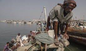الحديدة:ارتفاع معدل البطالة بين صفوف الصيادين