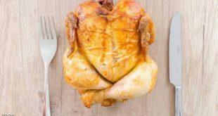 دجاج معدل جينيًا للقضاء على الإنفلونزا