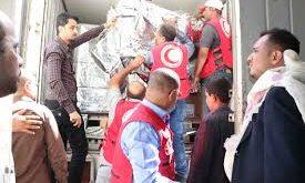 مارب:  الصليب الأحمر يُوَزِّع مساعدات إيوائية على 2325 نازحًا