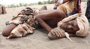 الحديدة:المجاعة تهدد حياة المواطنيين بمديرية الدريهمي المحاصرة