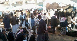 """بائعو"""" القات الشامي"""" نازحون من """"الحديدة"""" إلى """"صنعاء""""..(تقرير)"""