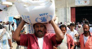الحديدة : منظمة الغذاء العالمي..توزع المساعدات للنازحين بالدريهمي