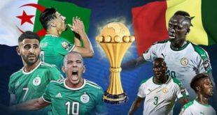 اليوم.. منتخب الجزائر يواجه السنغال في نهائي بطولة أمم أفريقيا .
