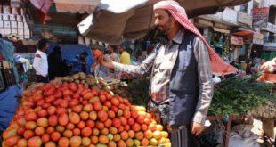الحديدة : الحرب تفاقم من معاناة المواطنين وتتسبب في تراجعتصدير الخضروات ..