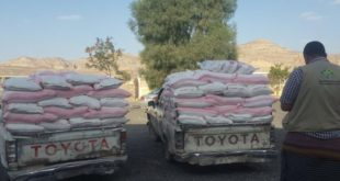 صنعاء : مؤسسة بنيان توزع ٧٠٠ سلة غذائية للأسر الأشد احتياجا بمديرية نهم