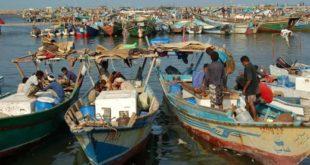 هيئة المصائد السمكية تجهز أربعه مراكز للحجر الصحي خاصة بالصيادين في الحديدة