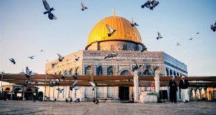 تحذيرات من الخطة الاسرائيلية الجديدة