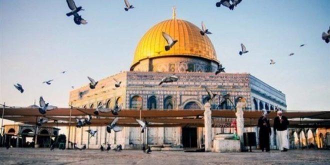 المسجد الاقصى -قدس الاخبارية