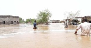 مدير عام مديرية المراوعة يطلع على أضرار السيول بالمديرية