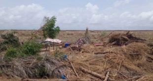 إعصار الجن الأحمر يضرب قرية المصنجية بمديرية الدريهمي ويؤدي إلى وفاة طفلة وإصابة إمرأة
